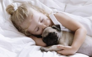 Sleeping-Child-Girl-with-Pug-Puppy-Images